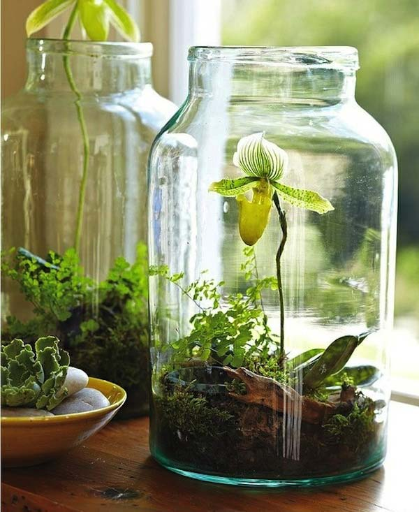 23 ideas to bring nature with indoor garden decoration (8)