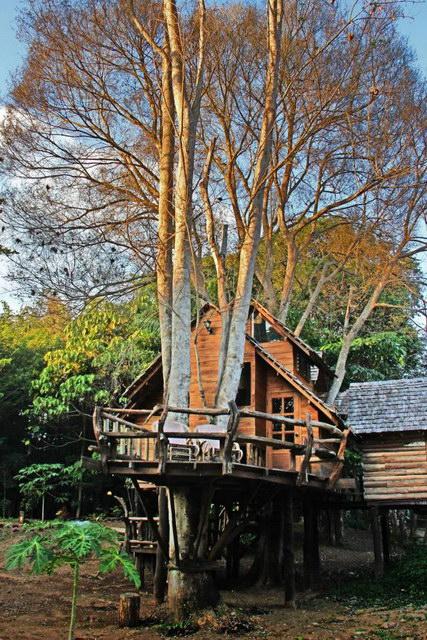 rabeang-pasak-chiangmai-treehouse-resort (13)
