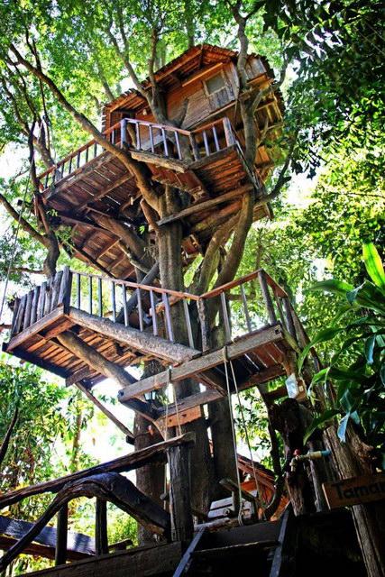 rabeang-pasak-chiangmai-treehouse-resort (3)