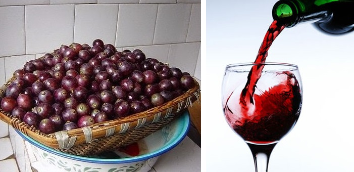 red wine home made diy (2)