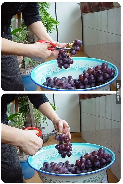 red wine homemade diy (1)