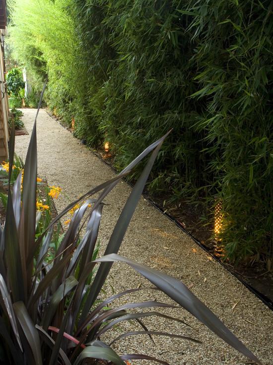 bamboo garden idea naibann (15)