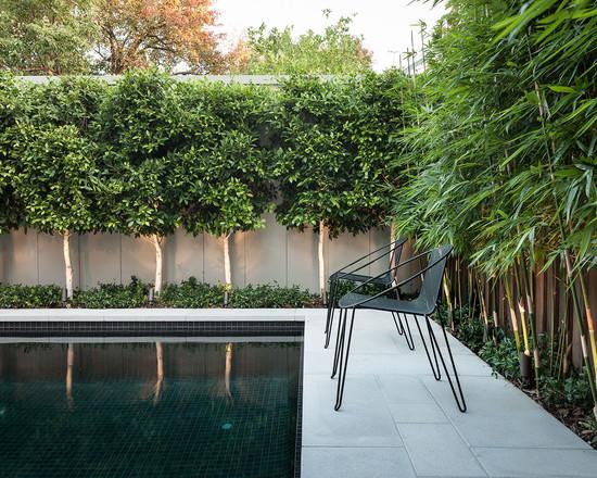 bamboo garden idea naibann (16)