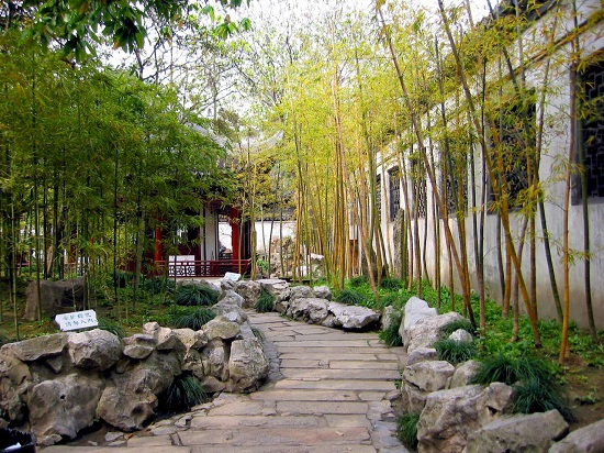 bamboo garden idea naibann (20)