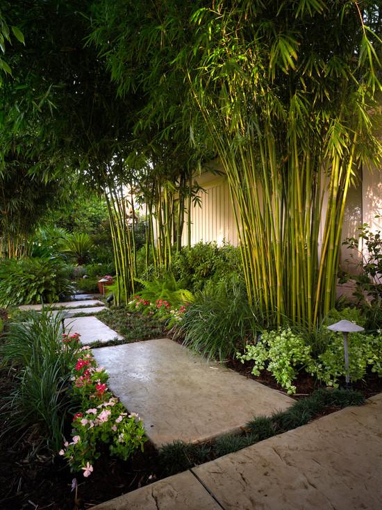 bamboo garden idea naibann (22)