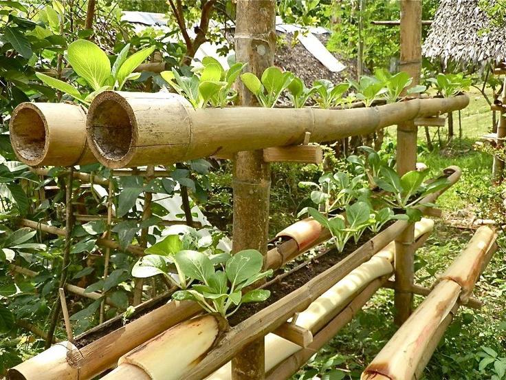 bamboo garden idea naibann (31)