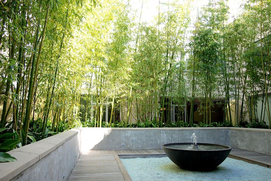bamboo garden idea naibann (36)