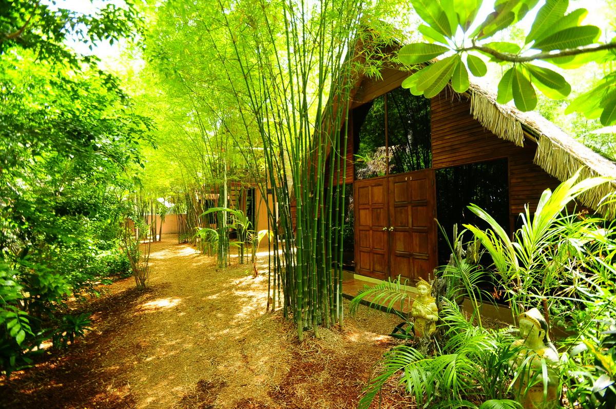 bamboo garden idea naibann (37)