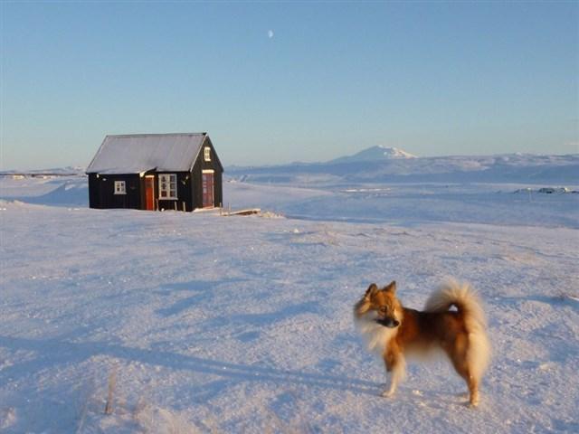 maja-siska-nordurnes-exterior3-via-smallhousebliss