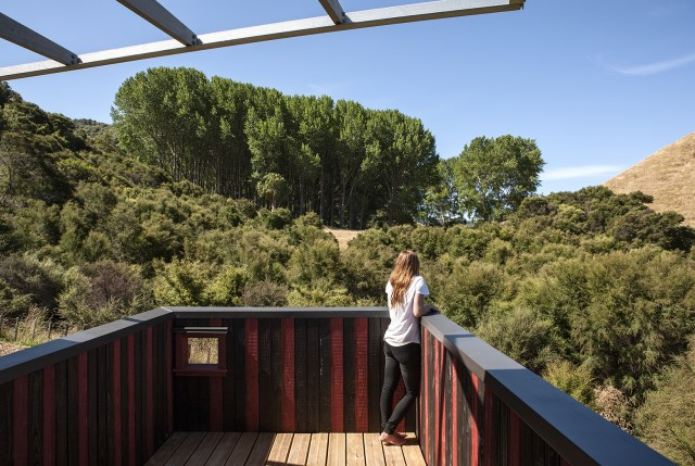 Longbush-Ecosanctuary-Welcome-Shelter-Sarosh-Mulla-Design-New-Zealand-Rooftop-Terrace-Humble-Homes