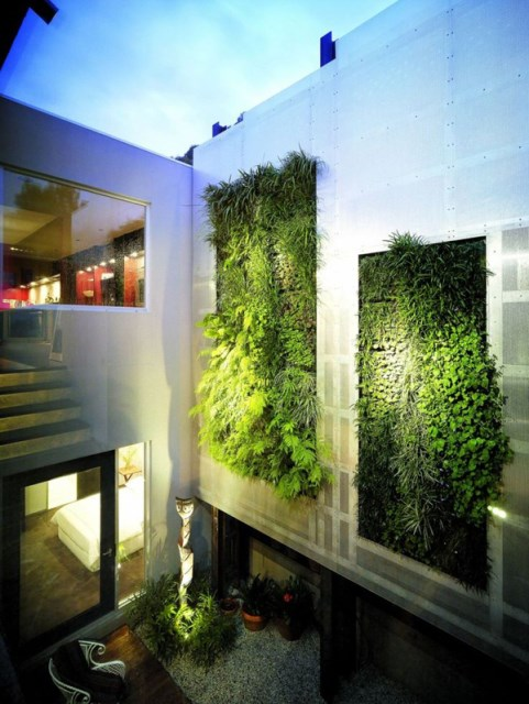 cool-green-living-wall-in-your-home