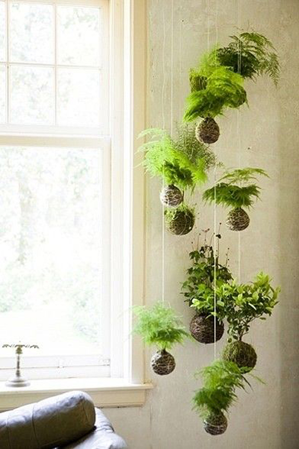 cool-string-garden-designs