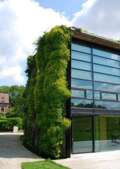 cool-vertical-garden-design