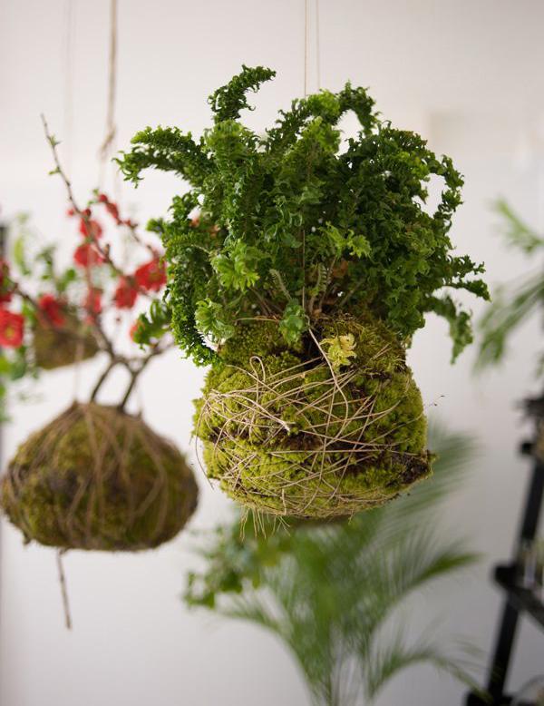 creative-DIY-string-garden-ideas