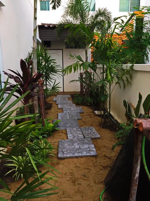 easy gardening by a beginner (3)