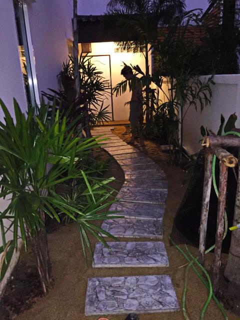 easy gardening by a beginner (6)