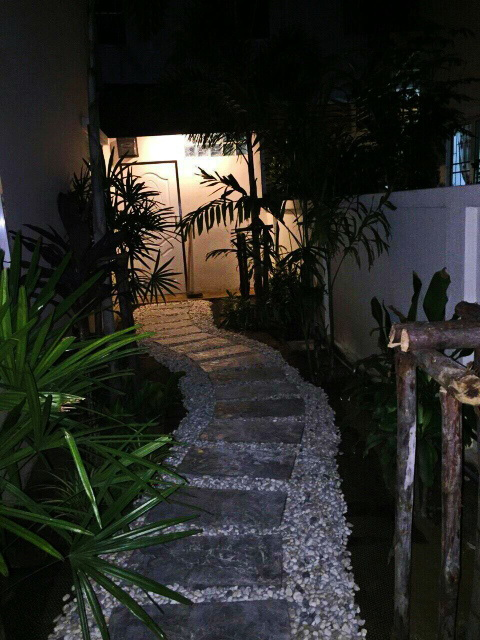 easy gardening by a beginner (7)