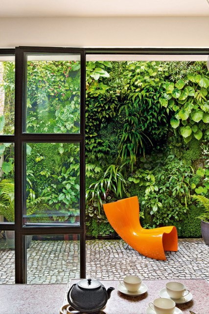 green-living-wall-in-backyard