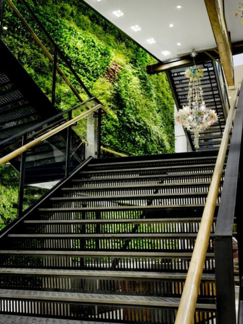 green-living-wall-in-the-stairs