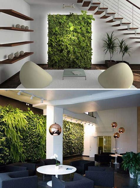 indoor-vertical-gardens