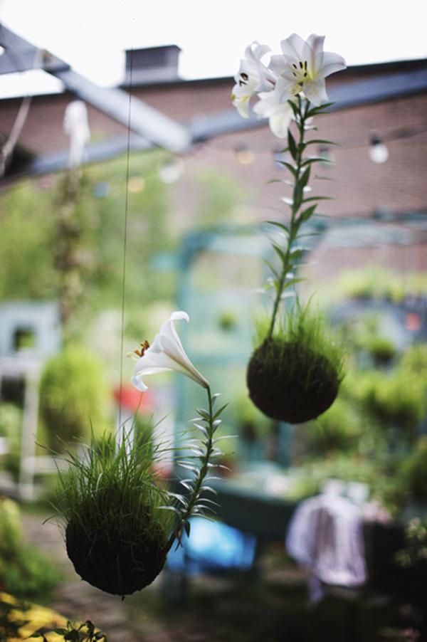 japanese-botanical-hanging-string-gardens