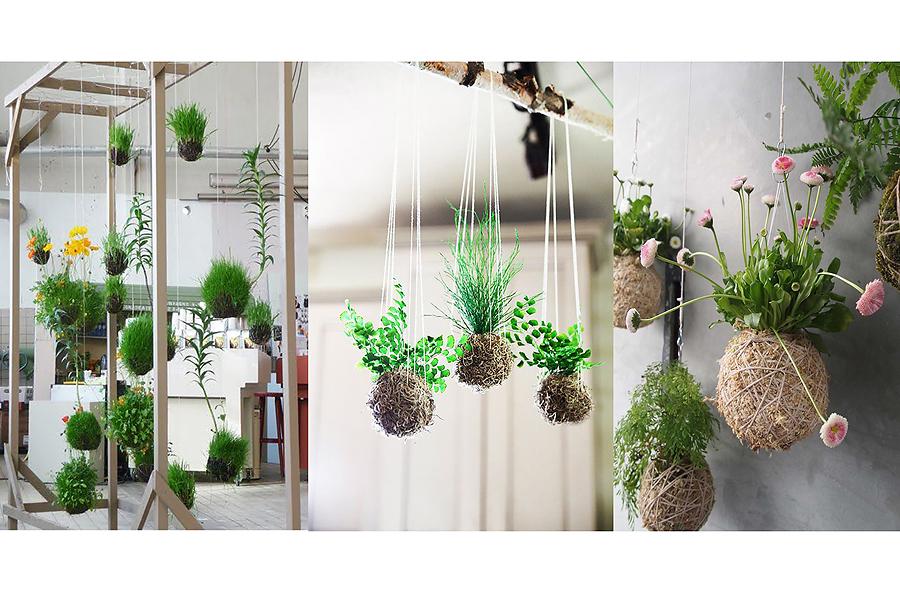 kokedama-string-garden-with-storage-iggggdeas