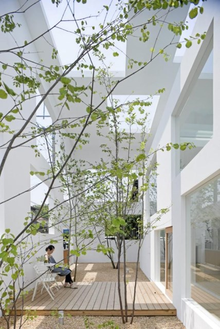 modern-japanese-garden-blurs-the-lines-between-indoor-and-outdoor