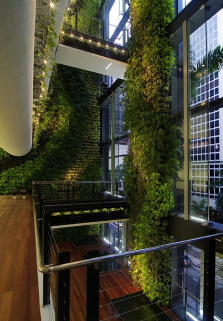 nature-living-wall-decoration