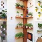 15 แนวทางปลูกพืชกระถางในบ้าน ดึงความเป็นธรรมชาติเข้าสู่การใช้ชีวิตประจำวัน