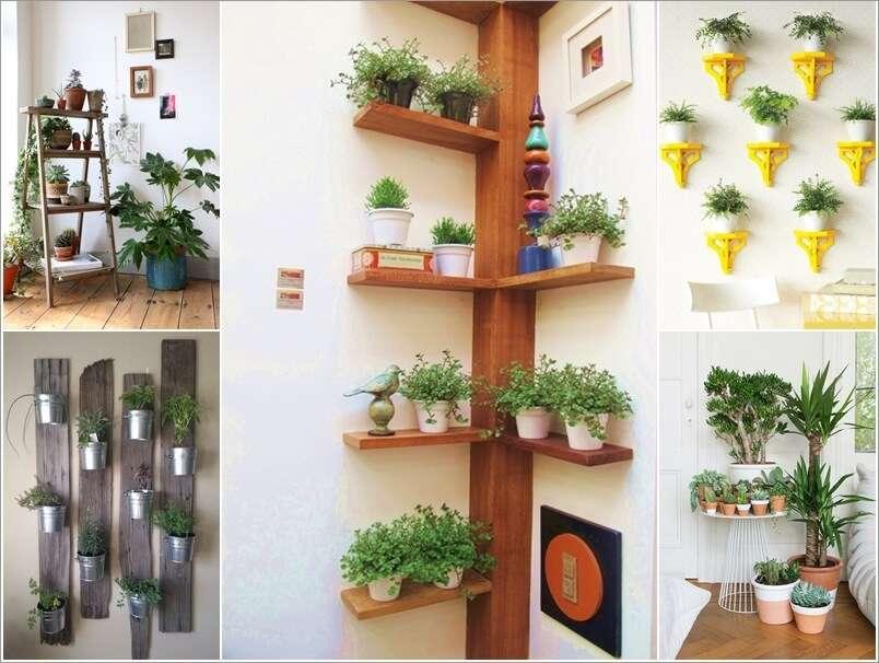 15-ideas-to-display-indoor-plants (1)