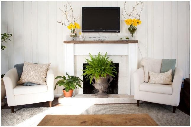15-ideas-to-display-indoor-plants (15)