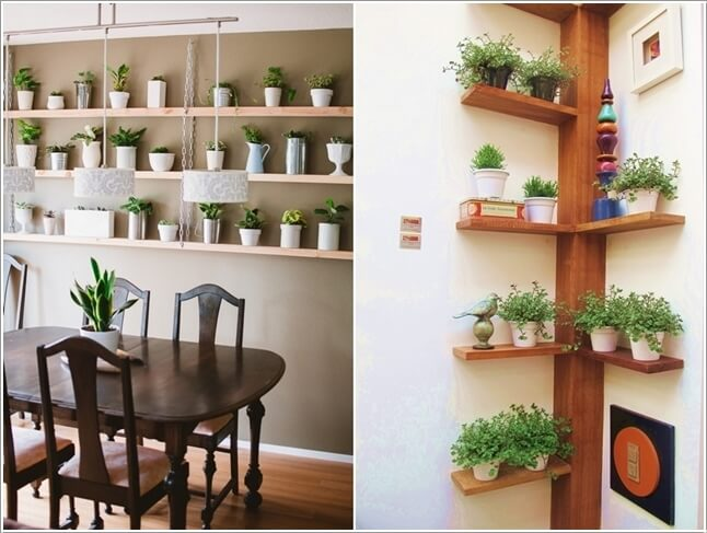 15-ideas-to-display-indoor-plants (2)