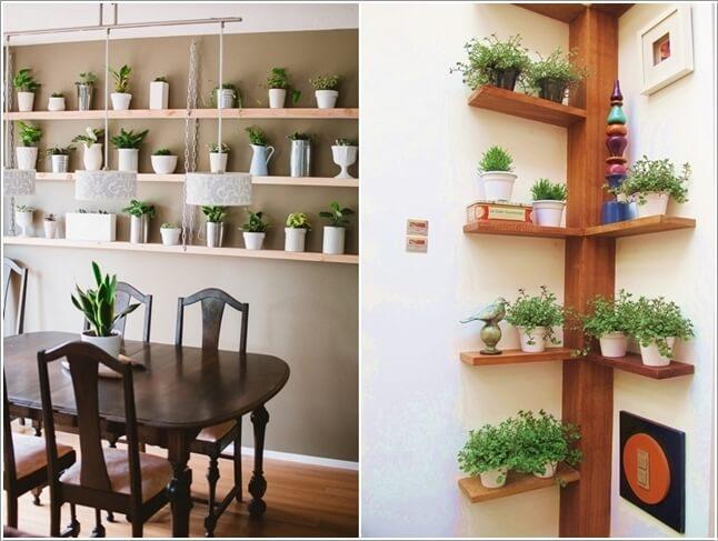 15-ideas-to-display-indoor-plants (2)