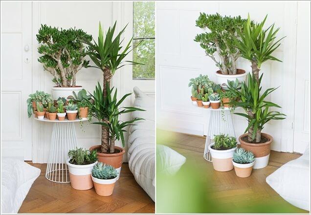15-ideas-to-display-indoor-plants (3)