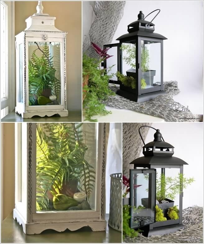15-ideas-to-display-indoor-plants (5)