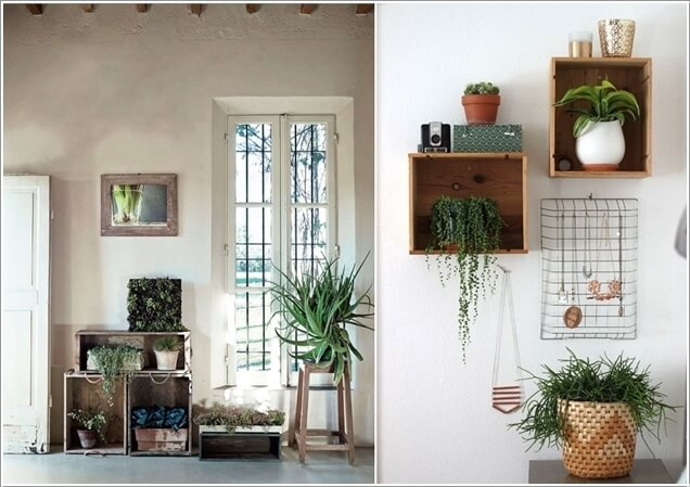 15-ideas-to-display-indoor-plants (7)