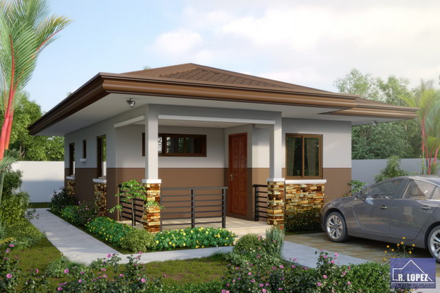 Elegant cozy small hip roof house (1)