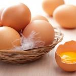 มาดูกัน!! วิธีเก็บรักษาไข่ ให้มีอายุนานนับปี โดยไม่ต้องแช่ตู้เย็น