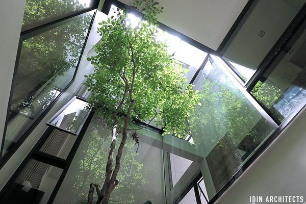 modern glassy townhouse renovation (12)