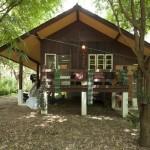 บ้านไม้หลังคาจั่ว ยกพื้นสูงพองาม ถูกใจคนไทยในรูปแบบบ้านสวน