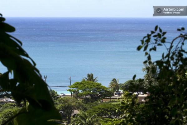 tiny-treehouse-bungalow-oceanview-hawaii-0014-600x400