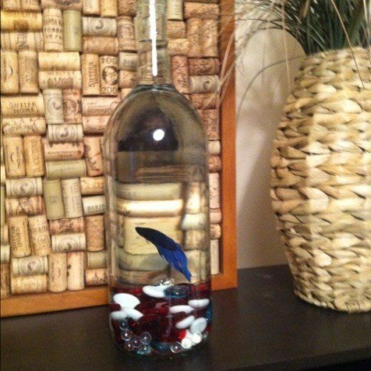 13 ideas to decorate house with old glass bottle (4)