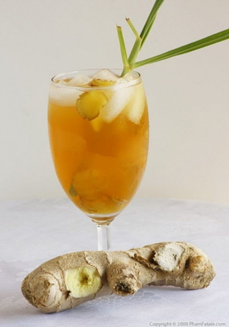 23-frozen-drink-recipes (16)