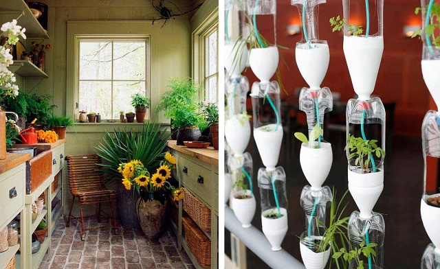 23-ideas-to-bring-nature-with-indoor-garden-decoration-cover