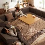 """นวัตกรรมจากญี่ปุ่น """"โต๊ะโคตัทซึ"""" โต๊ะนั่งเล่นที่มีผ้าห่ม เหมาะสำหรับหน้าหนาวสุดๆ"""