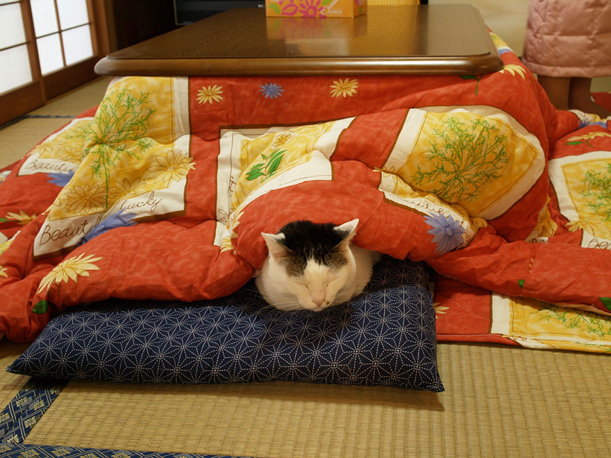 japanese invention kotatsu (7)