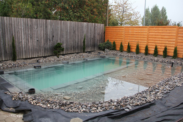 swimming pond in backyard review (16)