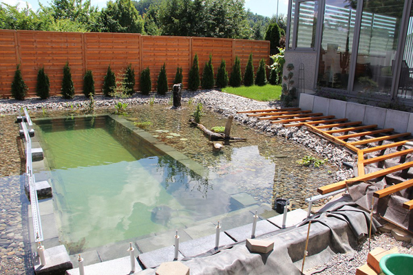 swimming pond in backyard review (17)