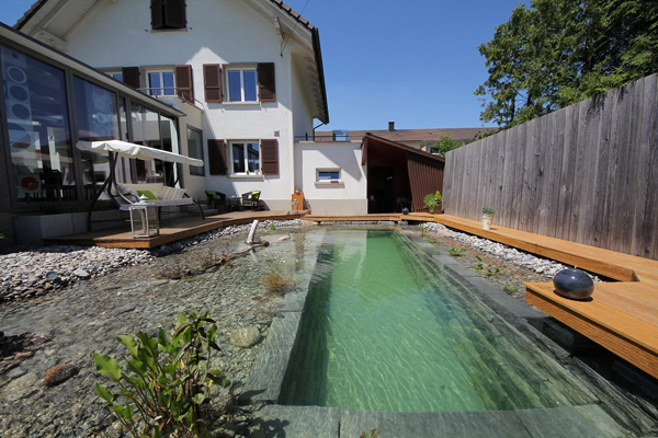 swimming pond in backyard review (21)