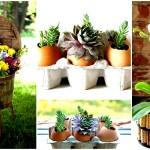 16 ไอเดียตกแต่งบ้าน ด้วยกระถางดอกไม้แบบ DIY สวยงาม ประหยัด และทำง่าย
